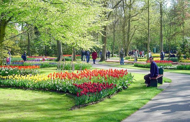תהלוכות פרחים בהולנד עם הילדים